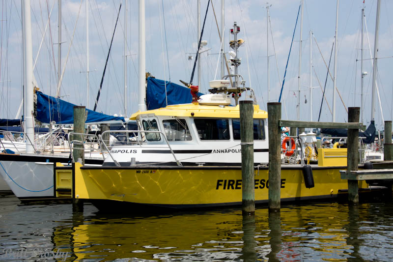 Deale md pictures posters news and videos on your for Annapolis fishing charters