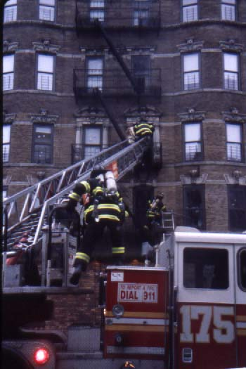 Fdny 10 75 All Hands Working